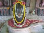 Shri Sharaneshwara Mahadev in Shri Golok Dham Ashram, New Delhi on Guru Purnima day with floral decorations