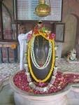 Visiting Pt. Shri Yadunandan Ji Sharma performs Rudrabhishek to Sharaneshwara Mahadev