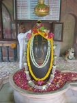 Visiting Pt. Shri Yadunandan Ji Sharma performs Rudrabhishek to Sharaneshwara Mahadev
