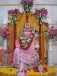 Shri Amarnidhi Hanuman Ji Maharaj in floral adornment for Shri Guru Purnima