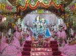 Thakur Shri Shri Radha Goloka Vihari Bhagavan and Ashtasakhis before Raajbhog Darshan