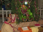 Shri Sadgurudev Ji Maharaj engaged in Darshan of Thakurji on Jhoola during Samaaj Gaayan