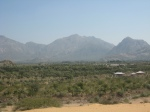 Some of the other vistas in the 6000 acres of Gaushala in that region.
