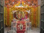Special Darshan of Thakur Shri Shri Radha Golokavihari Ji Bhagavan on the Patotsava day