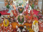 Shri Thakur Ji and all other worshipped deities ready for 1008 Lotus and Tulasi leaf offerings